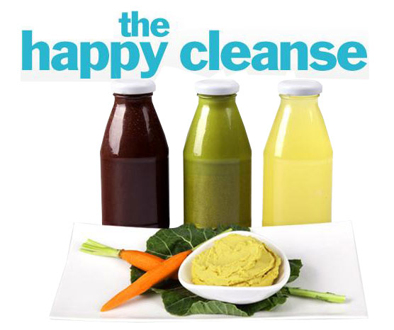 Juice food the happy cleanse from bliss joulebody beauty blitz ive done a number of juice cleanses in the passed year organic avenue blueprint cooler cleanse you name it although i felt great after completing them malvernweather Choice Image
