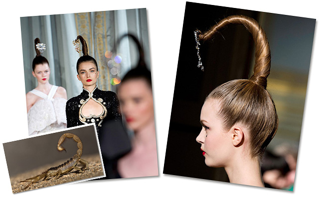 Models wore ponytails resembling metasoma at the Alexis Mabille Fall/Winter '13 collection. Photos: Getty Images